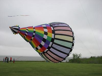 Skydance 2010
