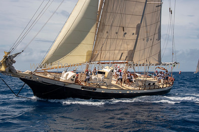 OCEAN STAR, CHROMOS, PETRANA, OTHERS under sail