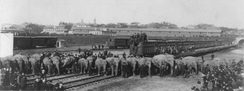 Ringling_Brothers_trains.jpg
