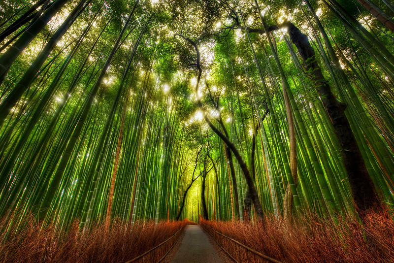 Photograph by Trey Ratcliff