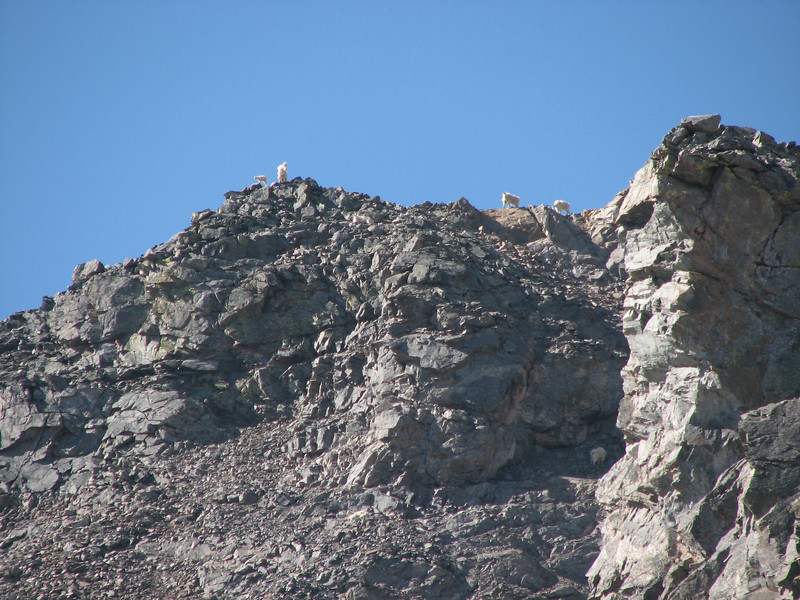 Torreys Peak 7-13-06 077.jpg