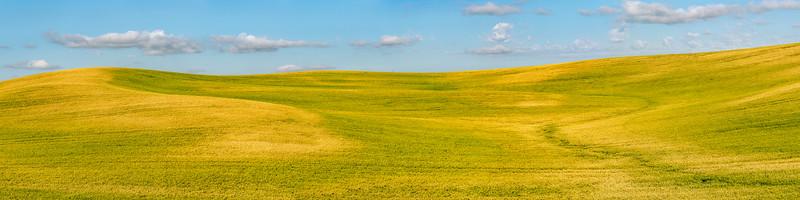 Rolling Farmland Ultrawide