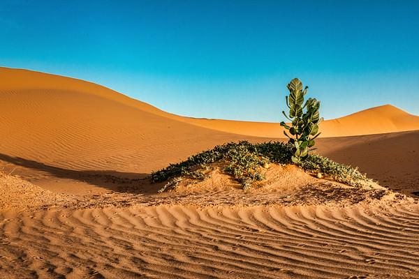 Morocco, 2019