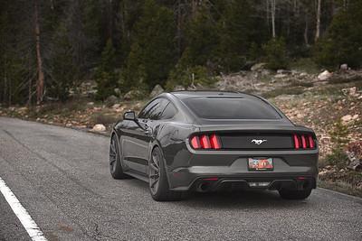 Mustang (05.23.15)