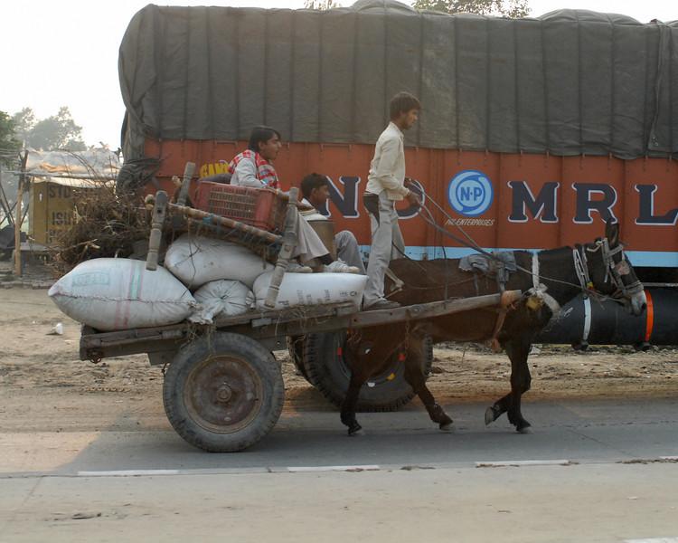 horse cart 2.jpg