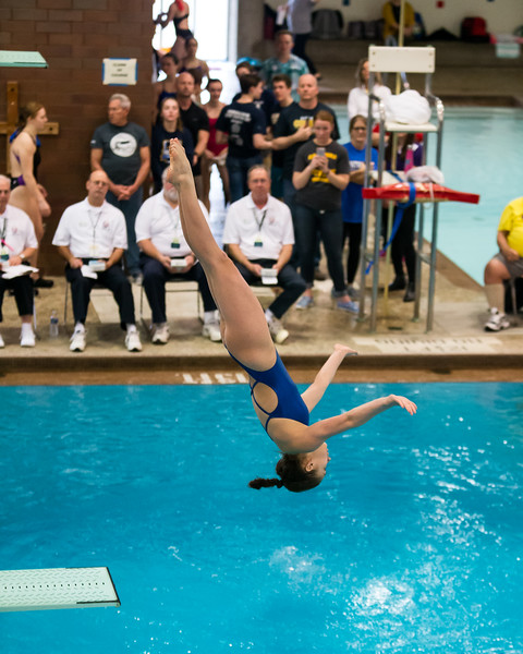 State Diving-11.jpg