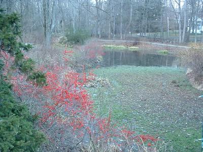 brookside December, 2004