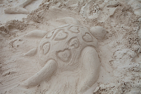 Sand Castle Contest - Dover Beach