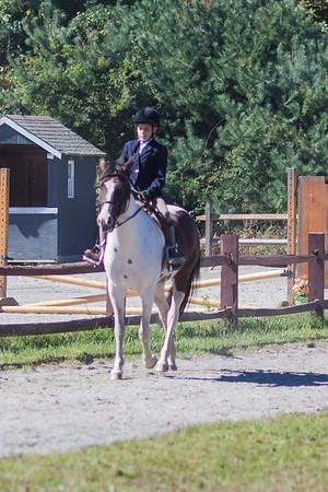 12-09-23 Persie Horse Show