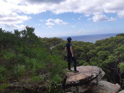 Putty Beach to Maitland Bay, Bouddi National Park, Killcare Heights, NSW - Australia
