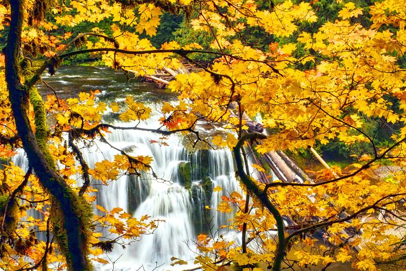 ~Autumn Window~