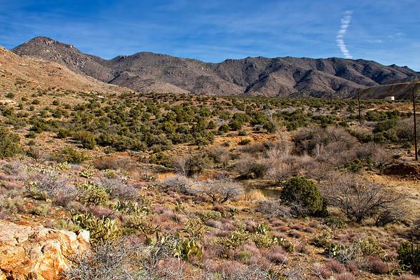 Mineral Park AZ