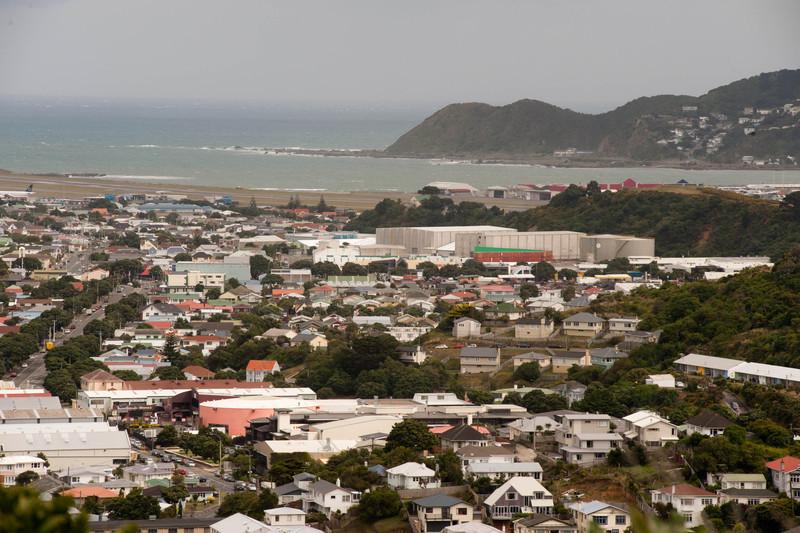Wellington5764.jpg