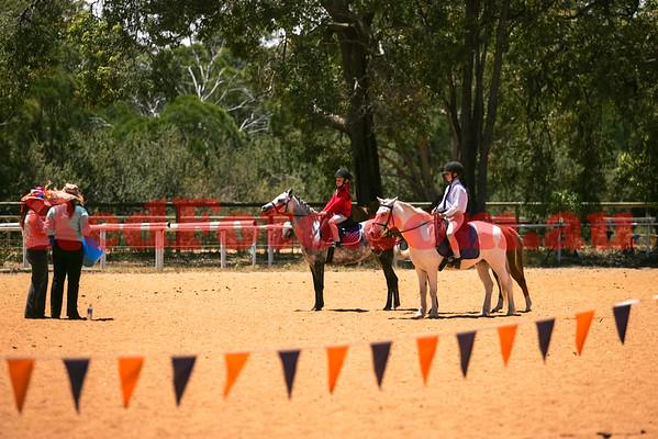 2014 11 16 Walliston Pony Club Fun Gymkhana Hacking 11-00 till 12-30
