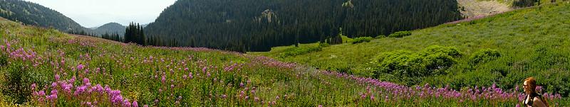 30-flower-hike-pano.jpg