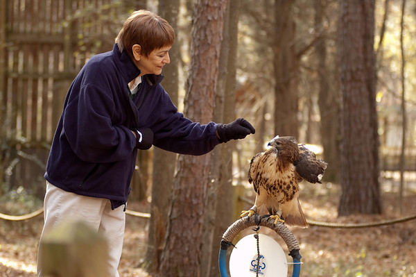 2010-12 Carolina Raptor Center