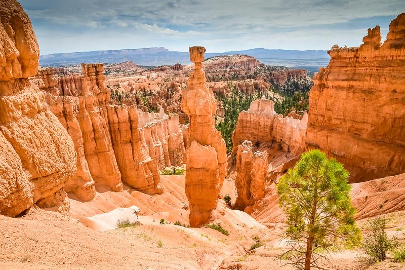 2019 Grand Canyon-122.jpg