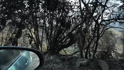 2017 - Thomas Fire