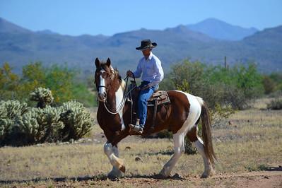 Saturday: Horseback Riding