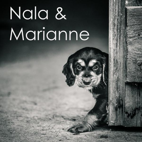 Nala-Icons.jpg