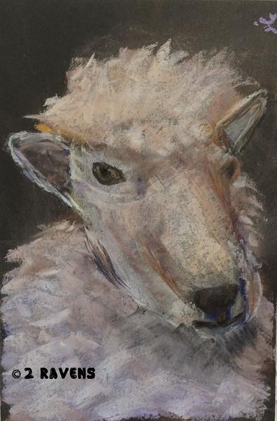 sheep in pastel