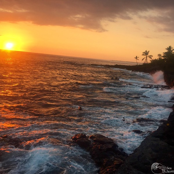 Kailua-Kona, Sunset in Paradise