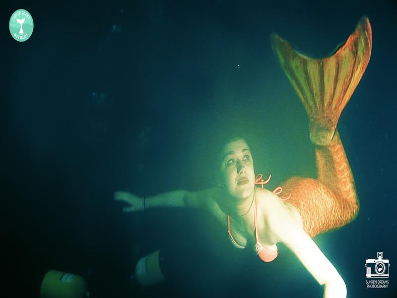 Mermaid Re Sequence.01_20_22_20.Still005.jpg
