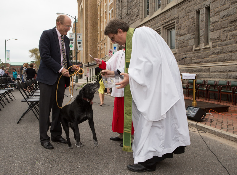 2016 Blessing of the Animals (57 of 66).jpg