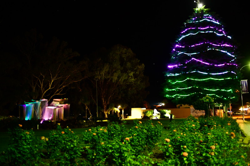 Renmark lights
