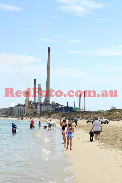 2012 12 29 Naval Base Beach 8 till 12-20