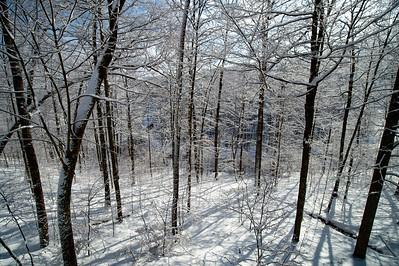 Winter in Sayre