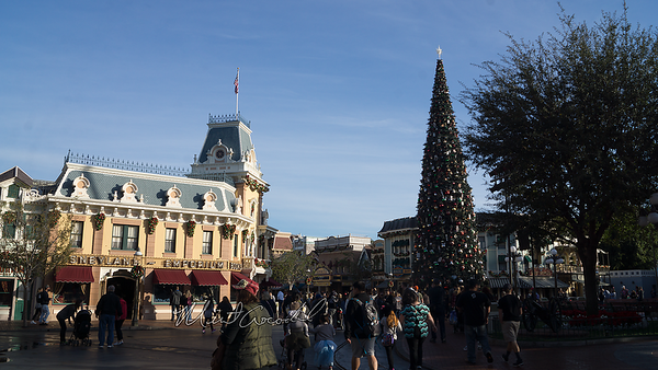 Disneyland Resort, Disneyland, Main Street USA, Christmas
