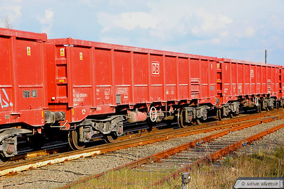 New - Wagons