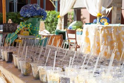 THE WEDDING PARTY HYATT AVENTINE