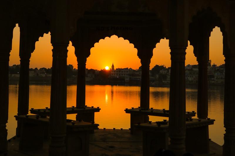 India-Pushkar-2019-9495.jpg