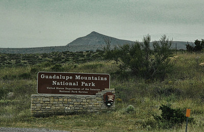 2013 Guadalupe Mtns. National Park