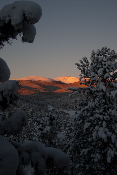 Snowy Sunrise on Mt. Logan