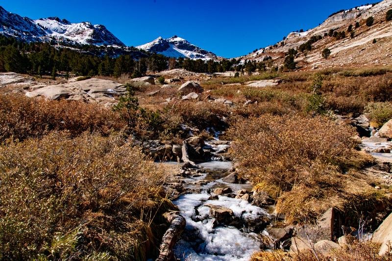 Fall in Lamoille Canyon
