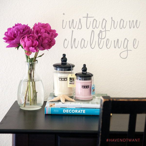 2016 Have Not Want Instagram Challenge