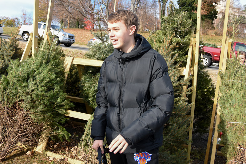 20191207 Getting Christmas Tree 029.jpg