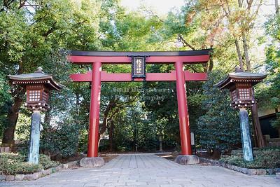 Japan - Tokyo - Nezu Shrine