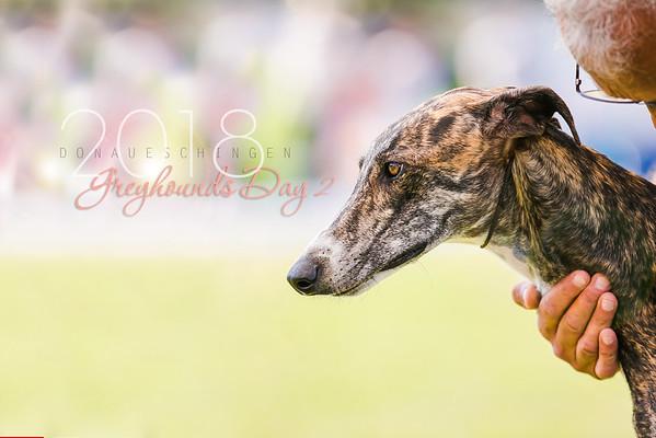 Donaueschingen-Greyhounds 05/08/18