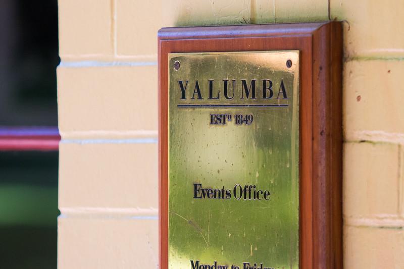 Yalumba-3327.jpg