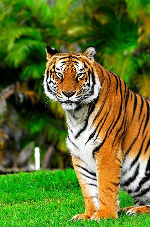 Miami Zoo Trip