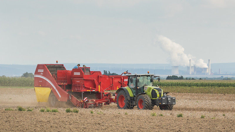 Claas Arion 650 with potato harvester Grimme SE260.
