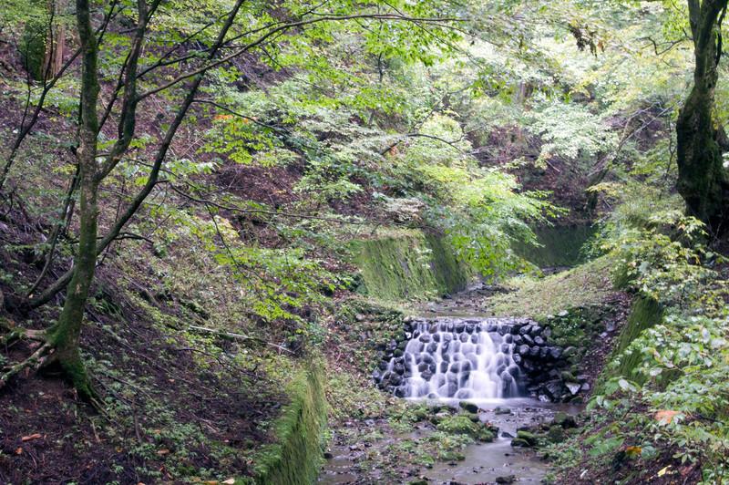 Japan_2010_NAT9162.jpg