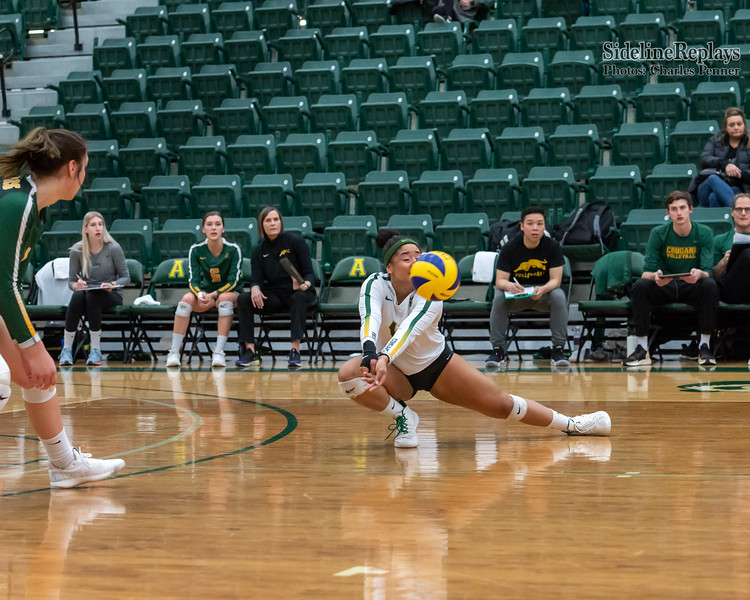 Volleyball - UofA Pandas vs UofR Cougars