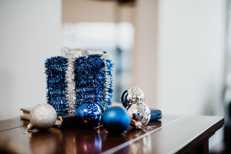 December 06, 2018 happy holidays DSC_3088.jpg