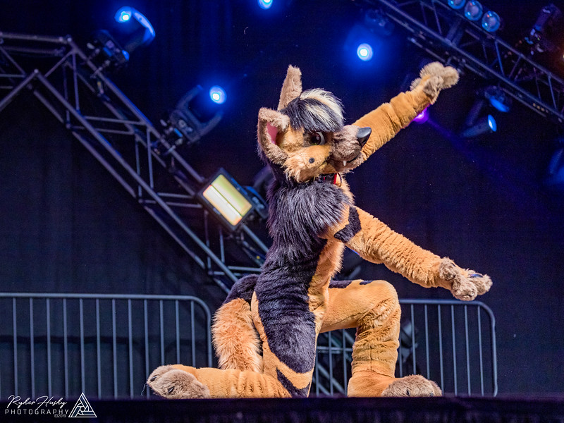 MFF 2018 Dance Comp-2419.jpg