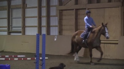 TSRC 2020-03-05 Milestone Sport Horses  Video